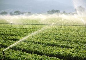 farm background, irrigation system
